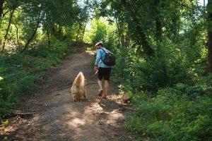 Mann läuft mit seinem Hund durch den Wald