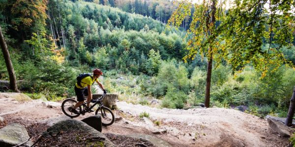 mountain-biker-riding-cycling-in-autumn-forest-pz2clgn-1024x683